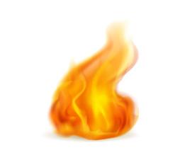 Cheminée Lons, Cheminée Orthez, Cheminée Pau, Foyer gaz Lons, Foyer gaz Orthez, Foyer gaz Pau, Poêle à bois Lons, Poêle à bois Orthez, Poêle à bois Pau, Poêle à granulés Lons, Poêle à granulés Orthez, Poêle à granulés Pau, Poêle Lons, Poêle Orthez, Poêle Pau